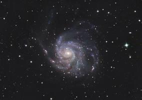 M101090429llrgb1tr3prweb